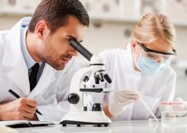 4 Types of DNA Testing That Determine Genealogy